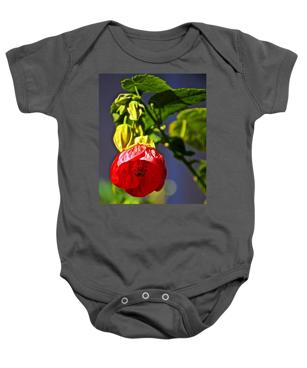 Scarlet Mallow At Pilgrim Place In Claremont Baby Onesie featuring the photograph Scarlet Mallow At Pilgrim Place In Claremont-california- by Ruth Hager