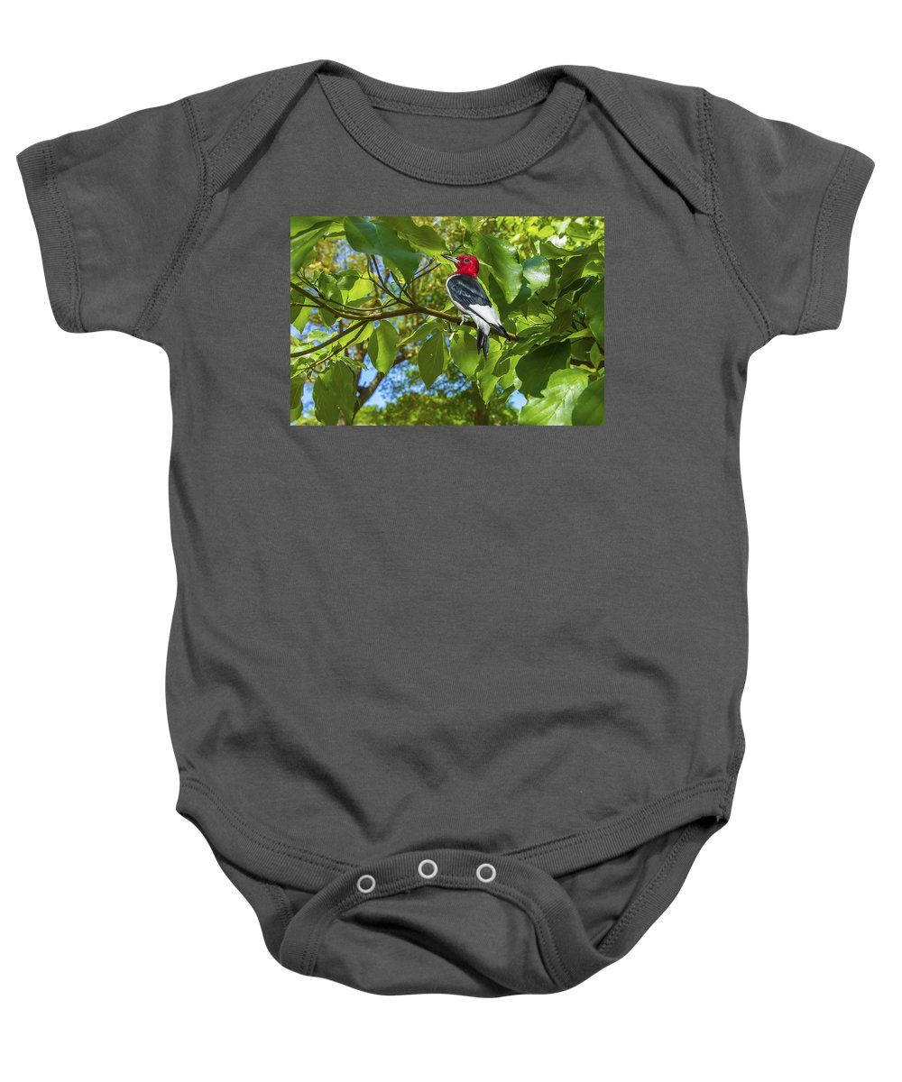 Woodpecker Baby Onesie featuring the photograph Red-headed Woodpecker by Kay Brewer