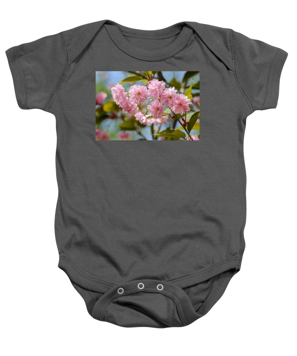 Oriental Baby Onesie featuring the photograph Sakura Flowers by Alain De Maximy