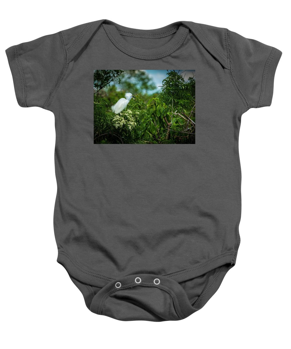 Birds Baby Onesie featuring the photograph Snowy by Marvin Spates