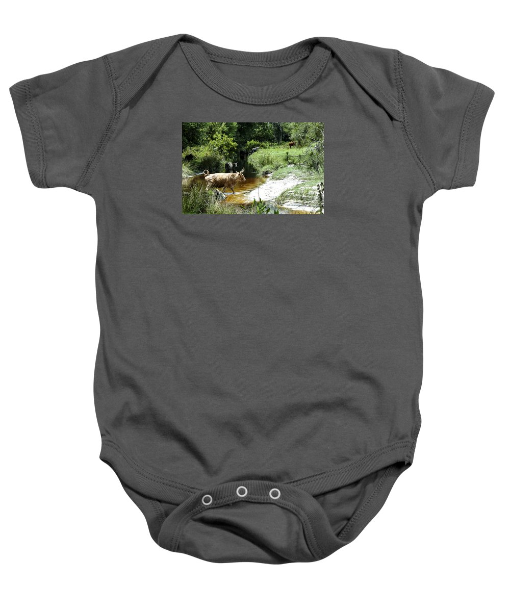 Landscape Baby Onesie featuring the photograph The Crossing 2 by Norman Johnson