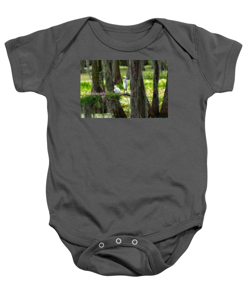 Bird Baby Onesie featuring the photograph Two Baby Great Egrets And Nest by Rich Leighton
