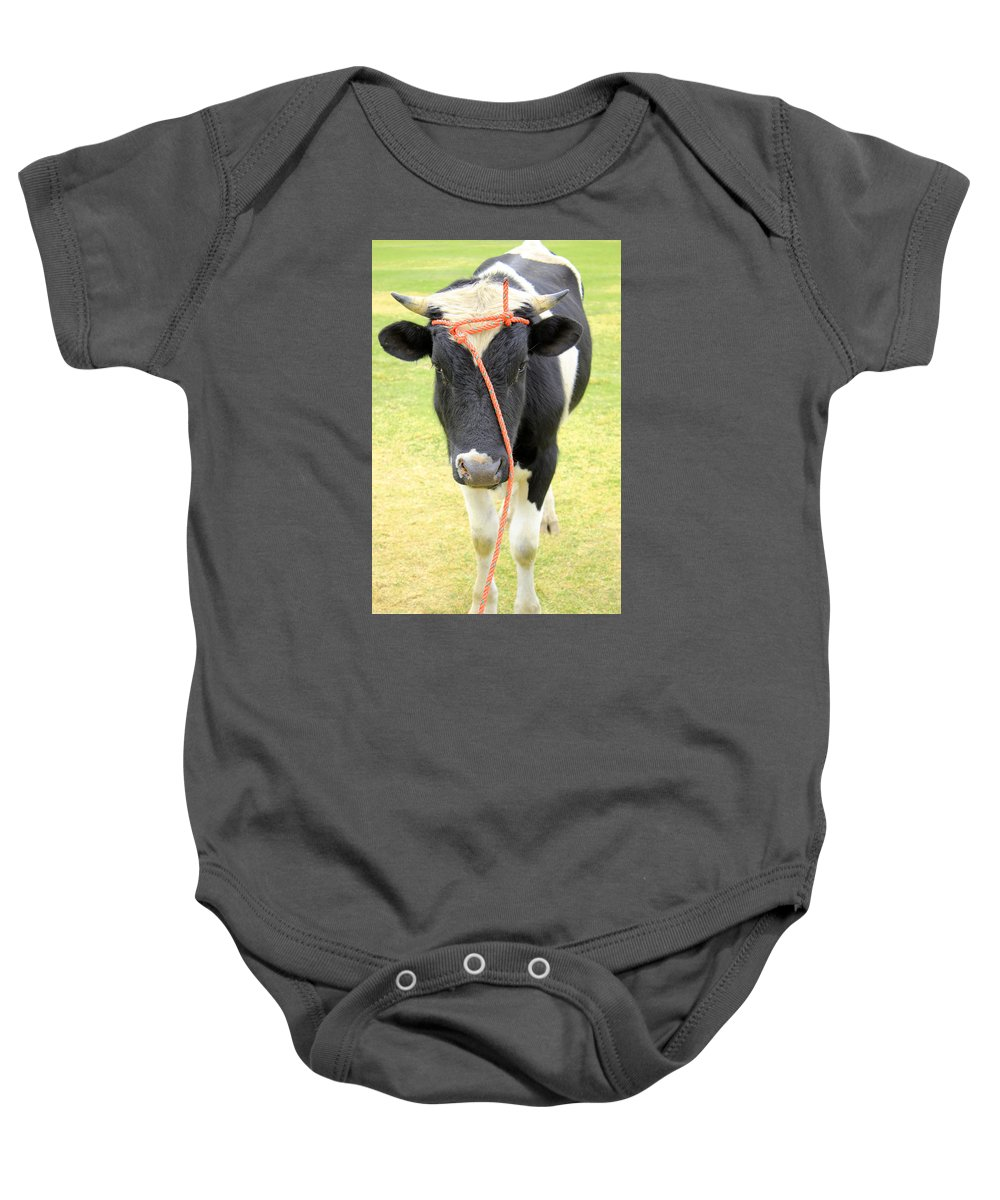 Bull Baby Onesie featuring the photograph Young Bull In A Field by Robert Hamm