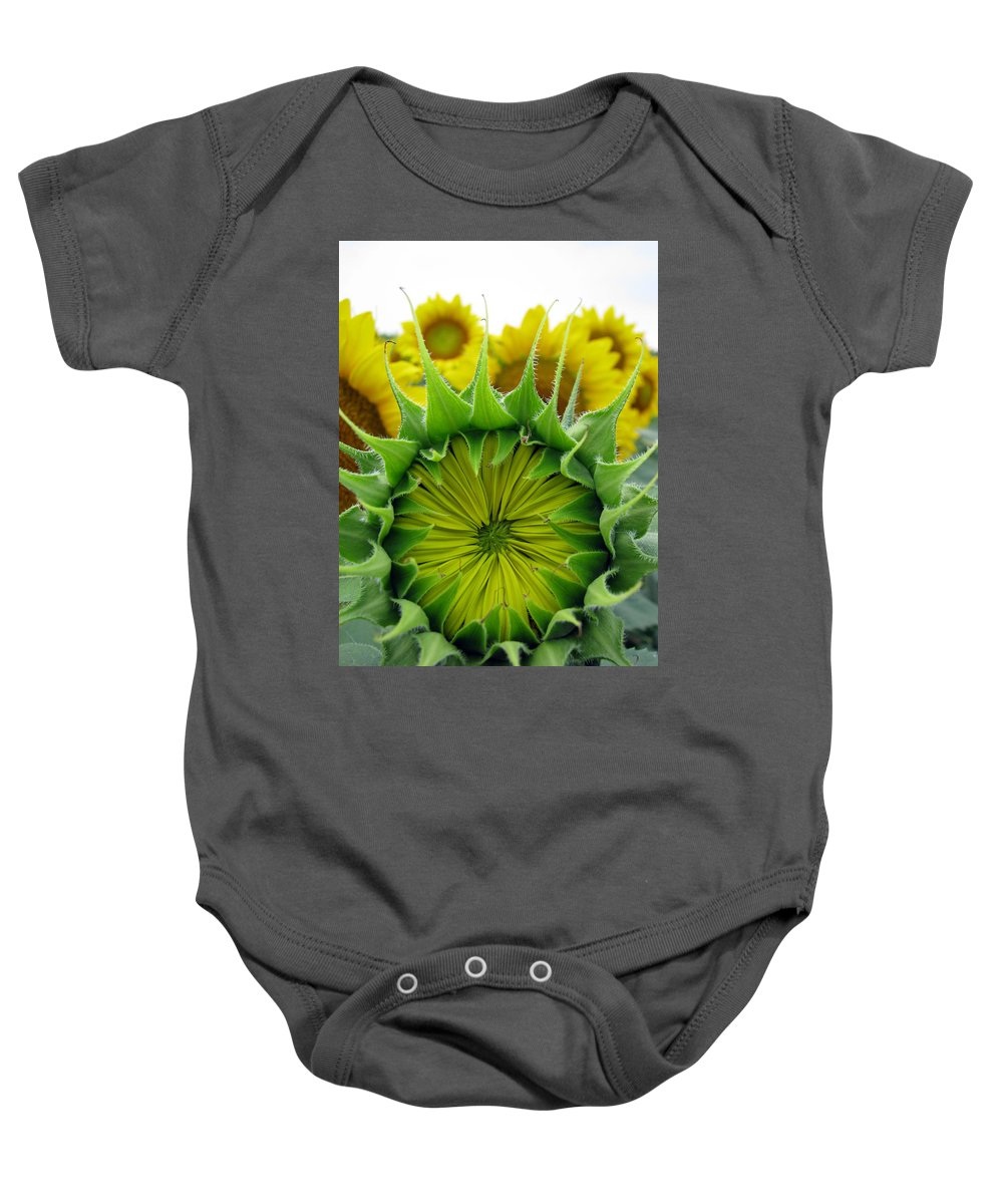 Sunflwoers Baby Onesie featuring the photograph Sunflower Series by Amanda Barcon
