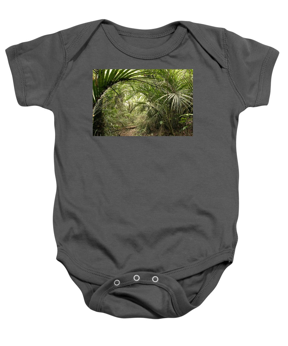 Rain Forest Baby Onesie featuring the photograph Jungle 60 by Les Cunliffe