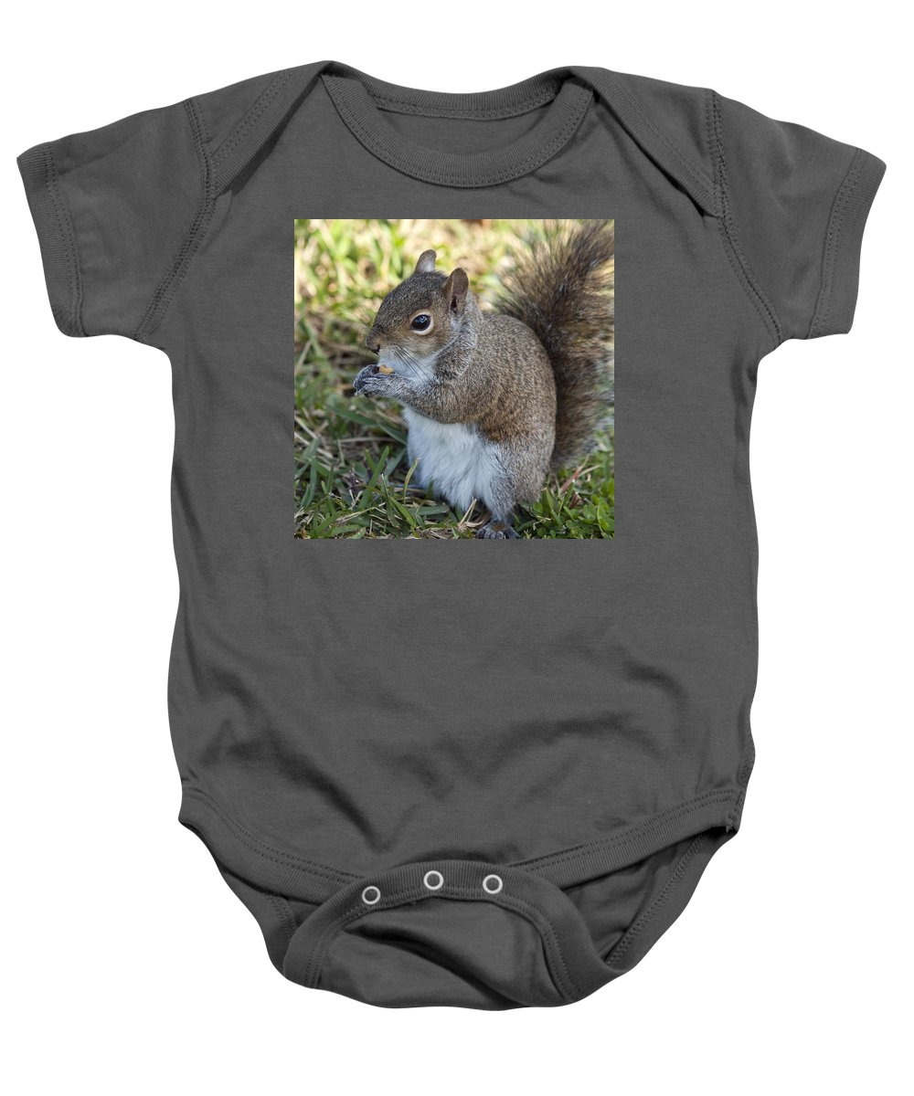 Squirrel Baby Onesie featuring the photograph Eastern Gray Squirrel by Allan Hughes