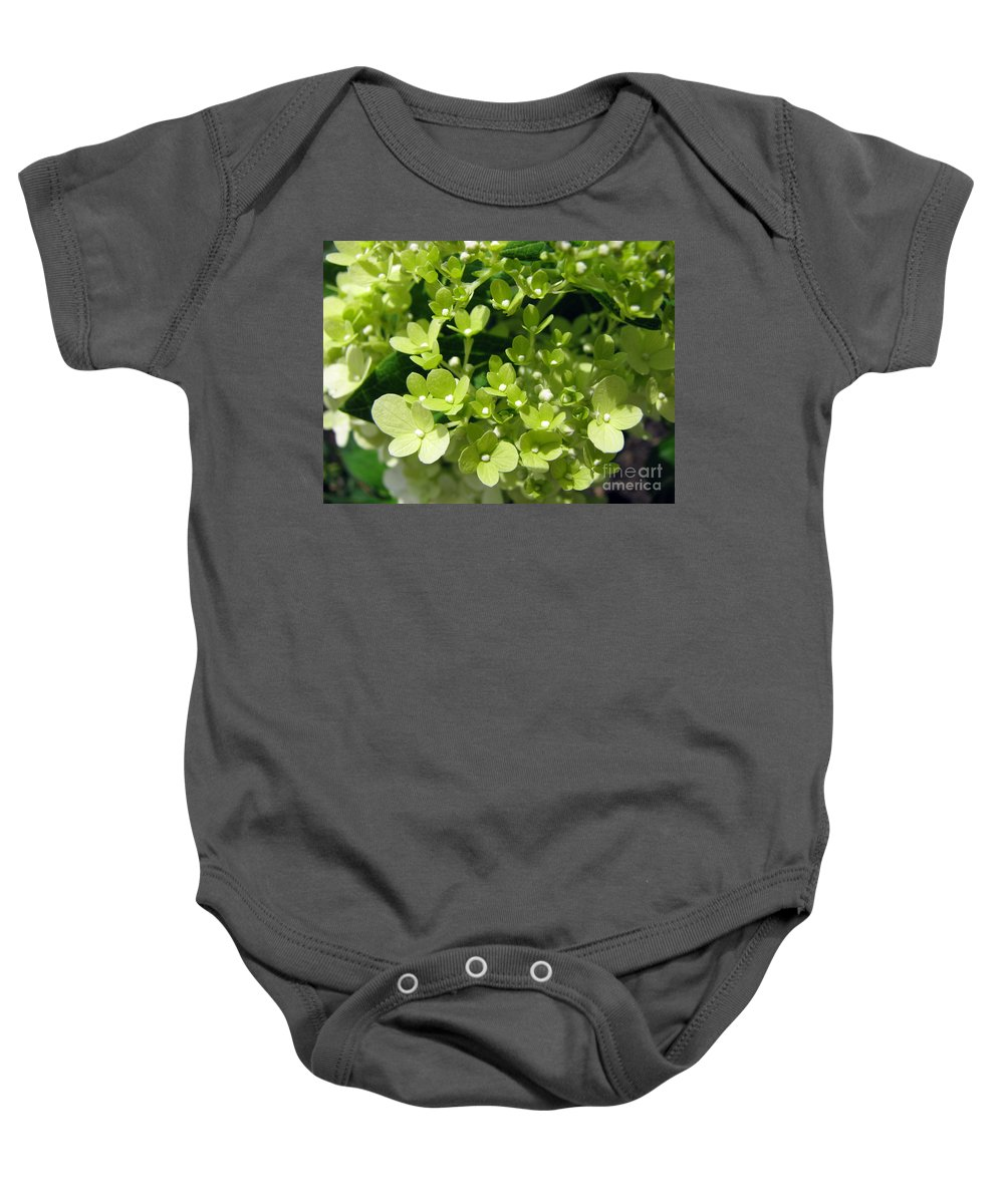 Hydrangea Baby Onesie featuring the photograph Hydrangea by Amanda Barcon