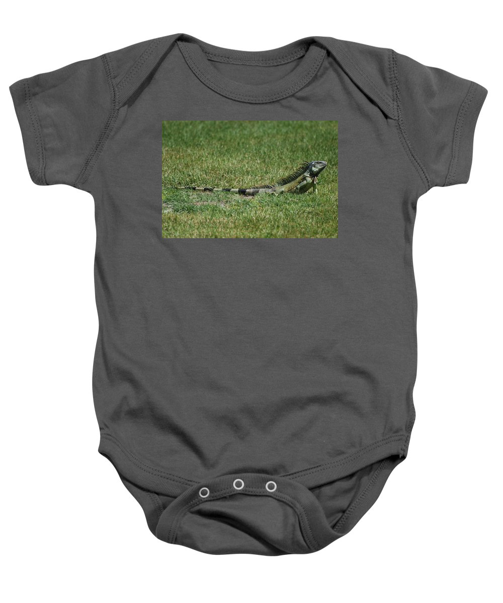 Macro Baby Onesie featuring the photograph I Iguana by Rob Hans