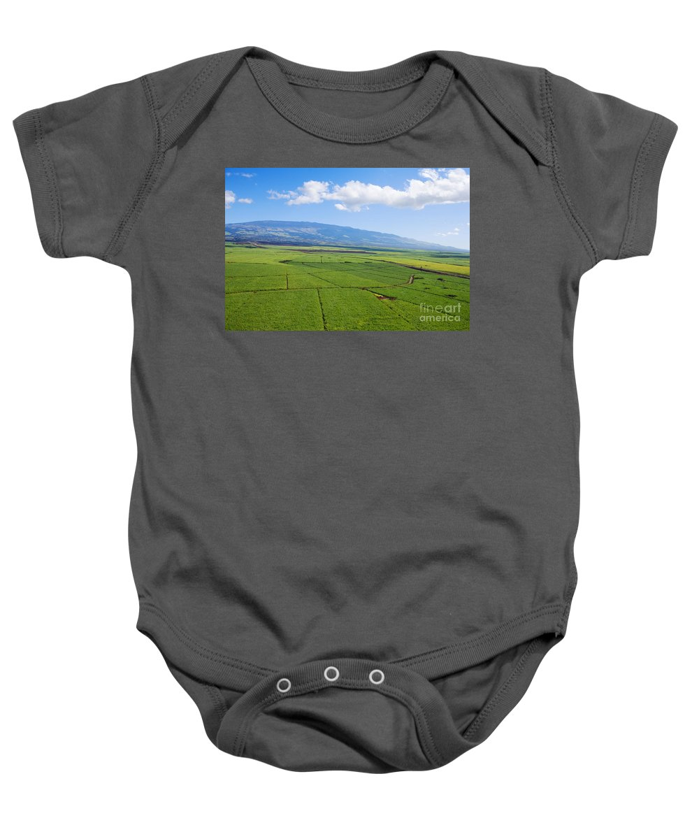 Above Baby Onesie featuring the photograph Maui Sugar Cane by Ron Dahlquist - Printscapes