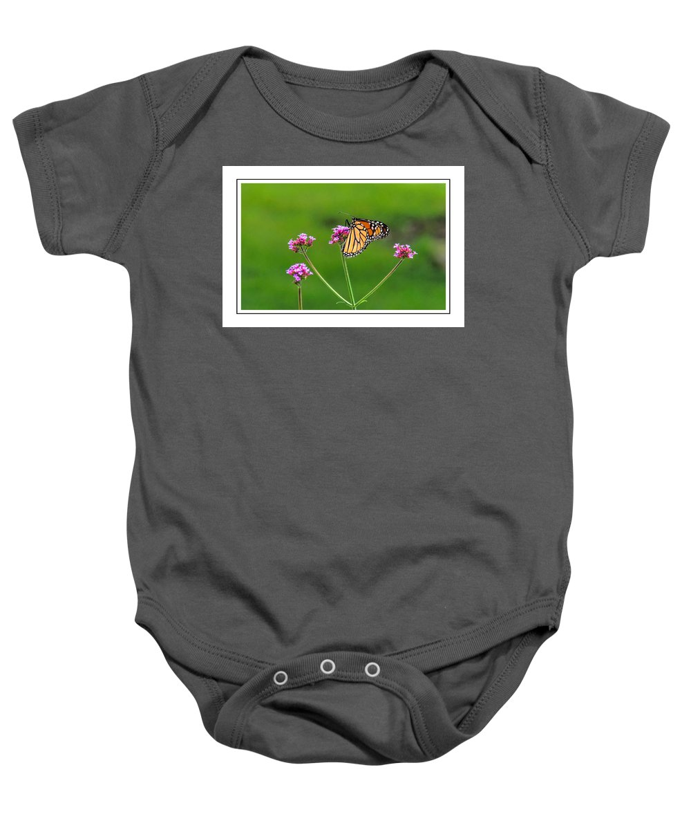 Card Baby Onesie featuring the photograph Monarch Butterfly by Alan Hutchins