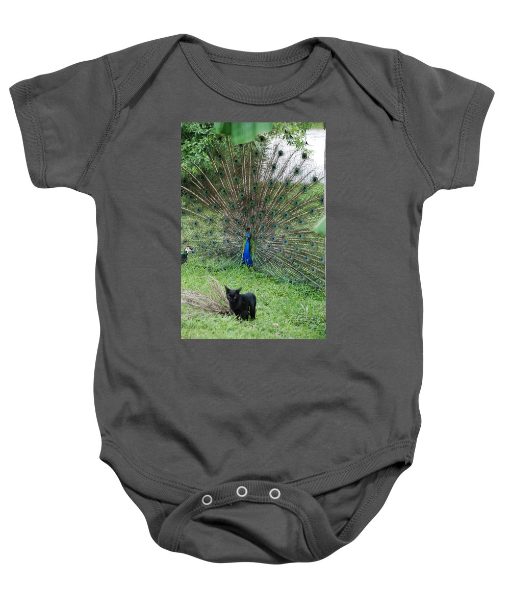 Animals Baby Onesie featuring the photograph 2 Peacocks And A Black Pussy Cat by Rob Hans