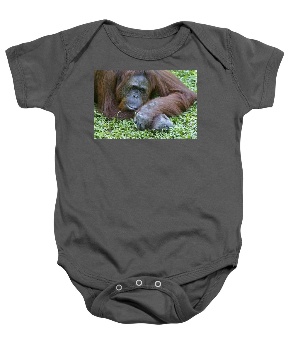 Asia Baby Onesie featuring the photograph Relaxation by Michele Burgess