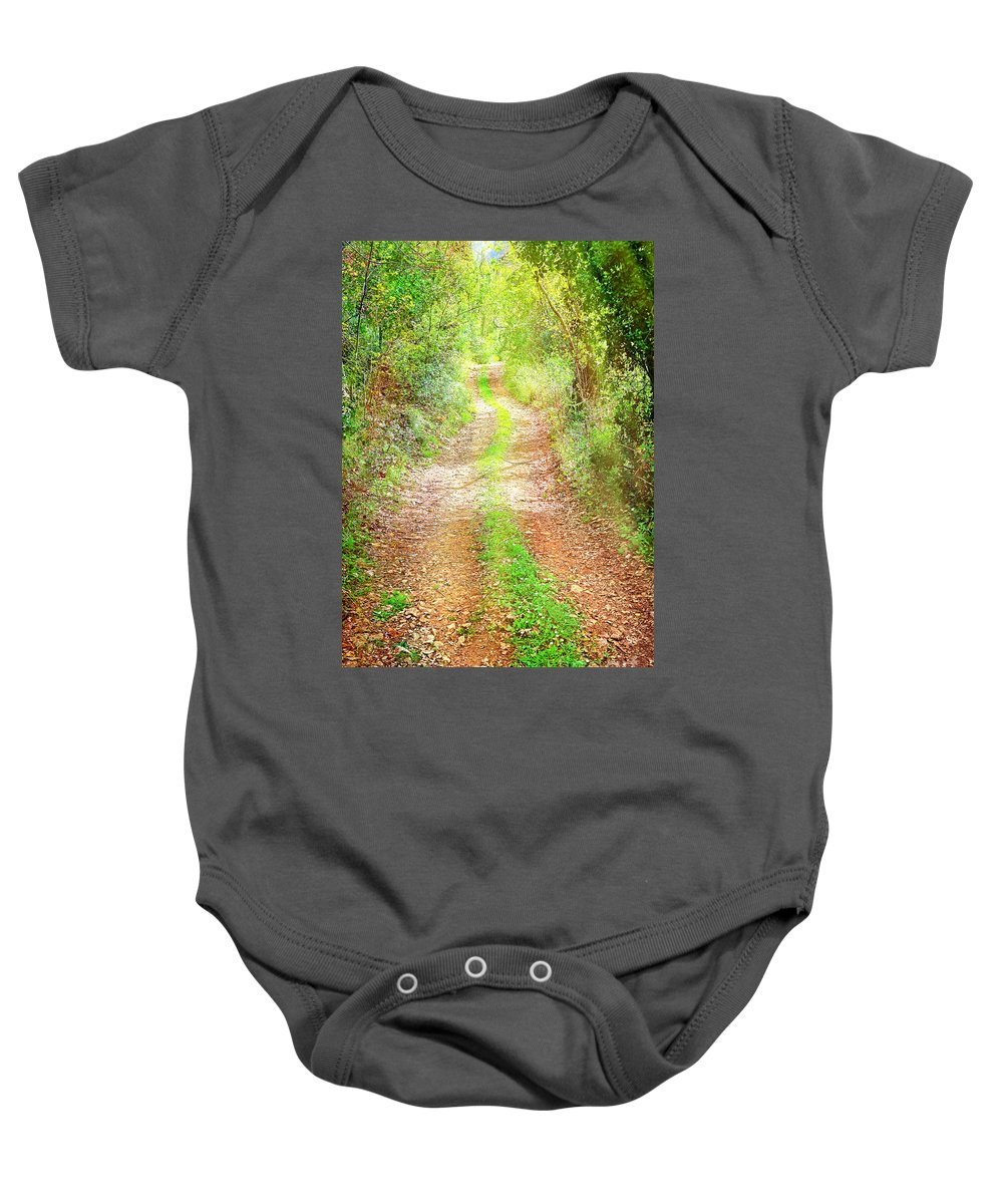 Beauty Baby Onesie featuring the photograph Walkway In Secluded Deciduous Forest by Anna Om