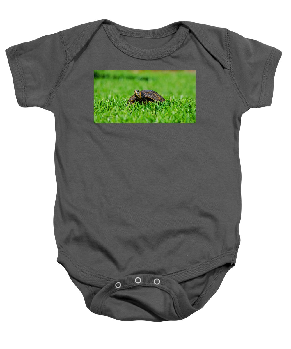 Turtle Baby Onesie featuring the photograph 2015 05 03 02 B Hide A Way 0146 by Mark Olshefski
