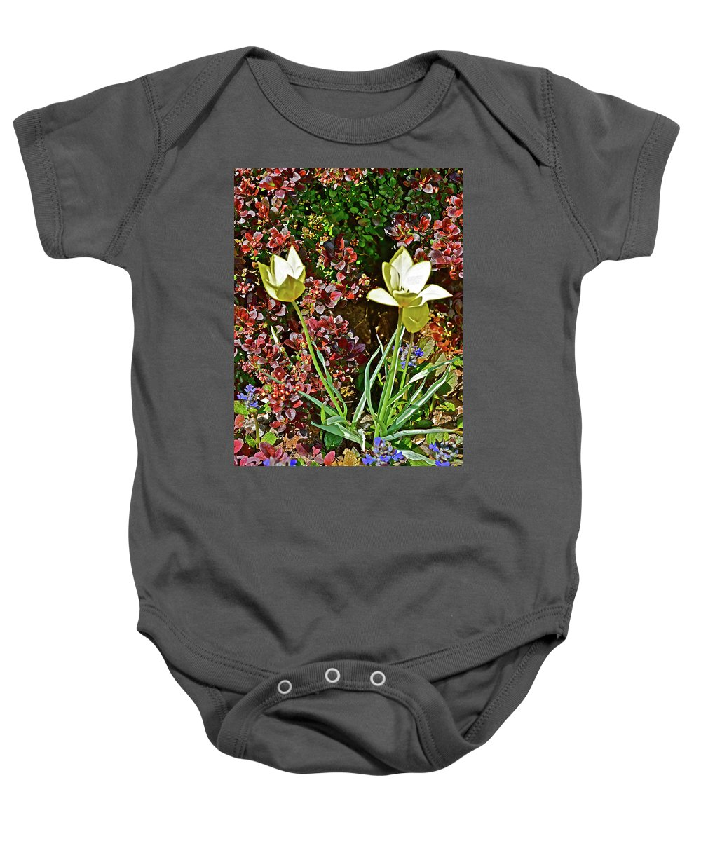 Flowers Baby Onesie featuring the photograph 2016 Early May Side Garden Delight by Janis Nussbaum Senungetuk