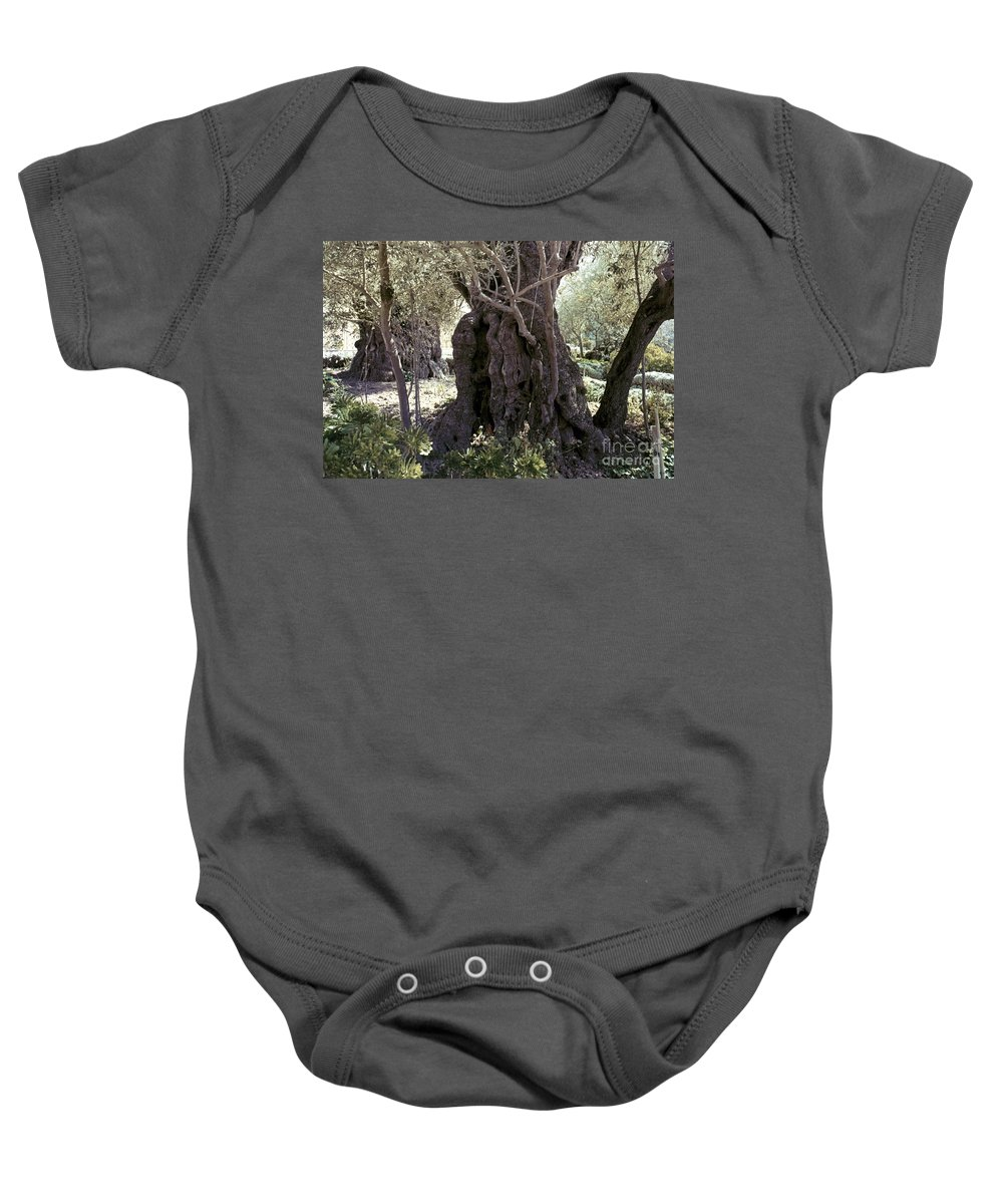 Garden Baby Onesie featuring the photograph Holy Land: Jerusalem by Granger
