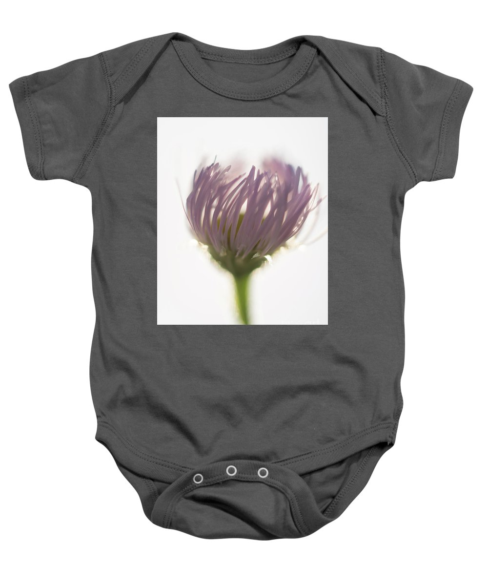 Purple Baby Onesie featuring the photograph Pastel Purple Flowers by Michelle Himes