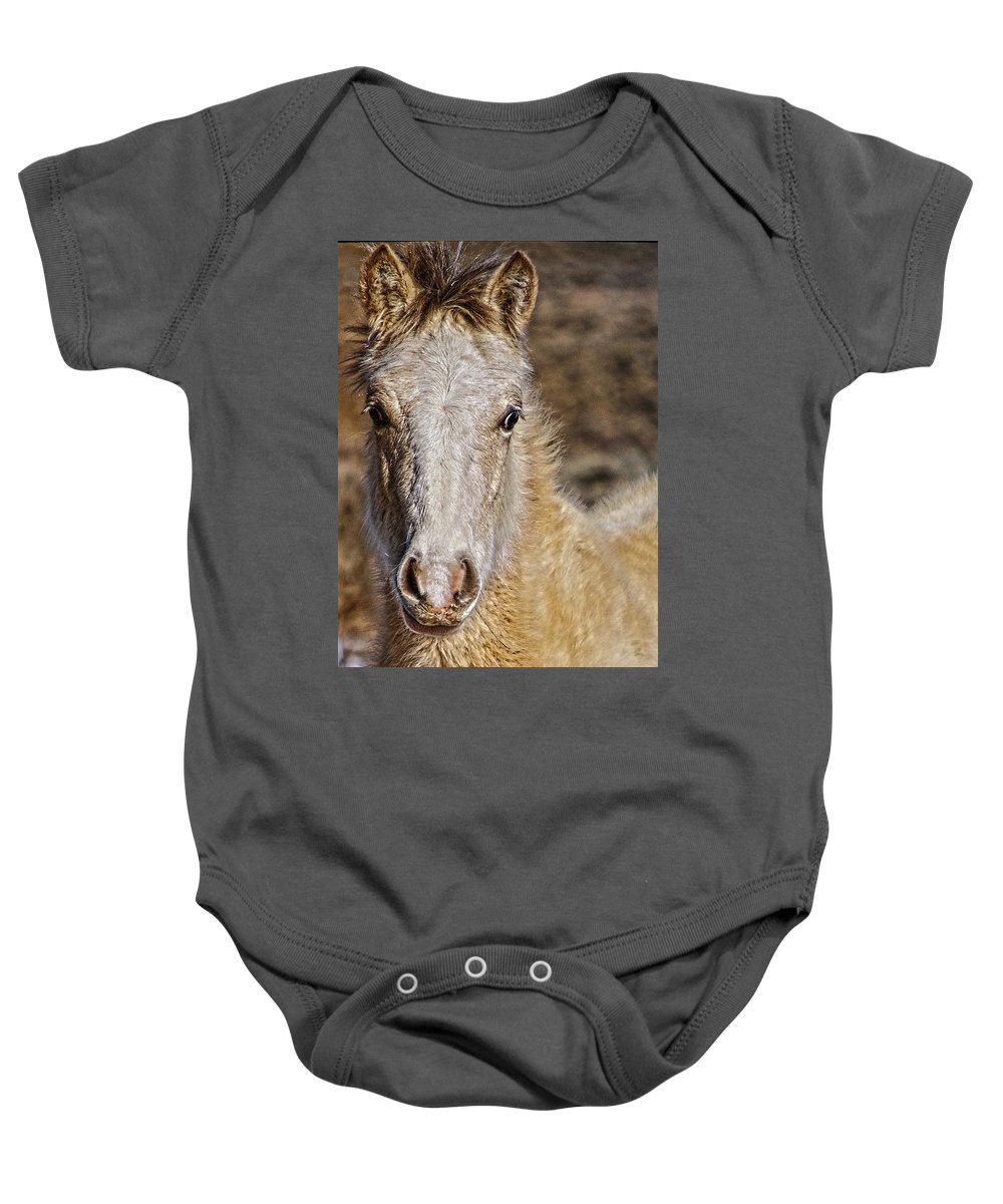 Santa Baby Onesie featuring the photograph Red Willow Pony by Charles Muhle