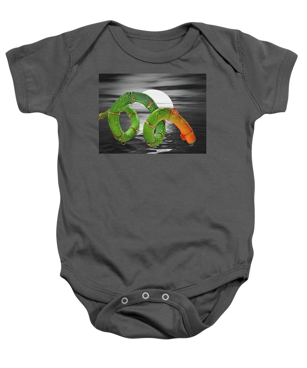 Zen Baby Onesie featuring the photograph Zen by Manfred Lutzius