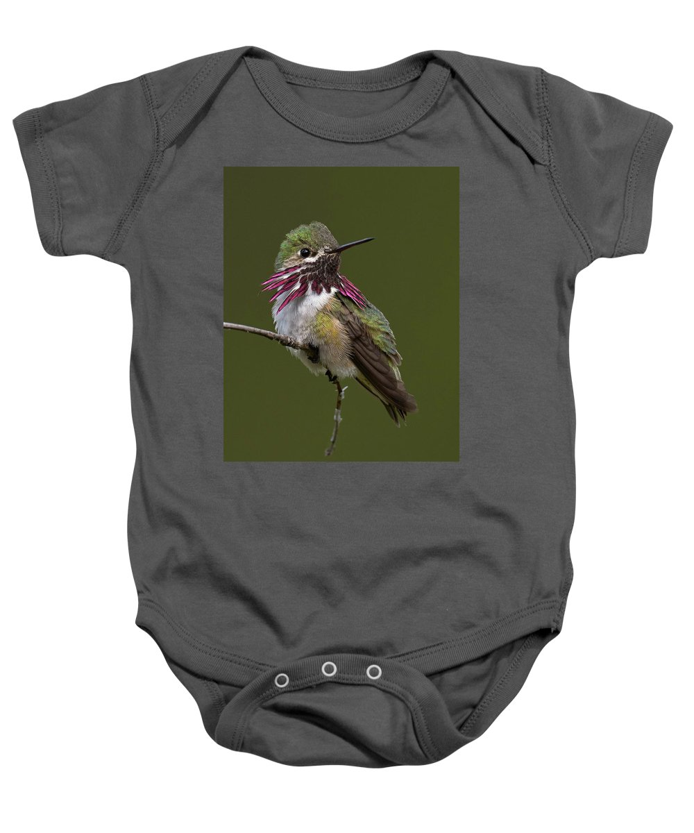 Birds Baby Onesie featuring the photograph Calliope Hummingbird by Doug Herr
