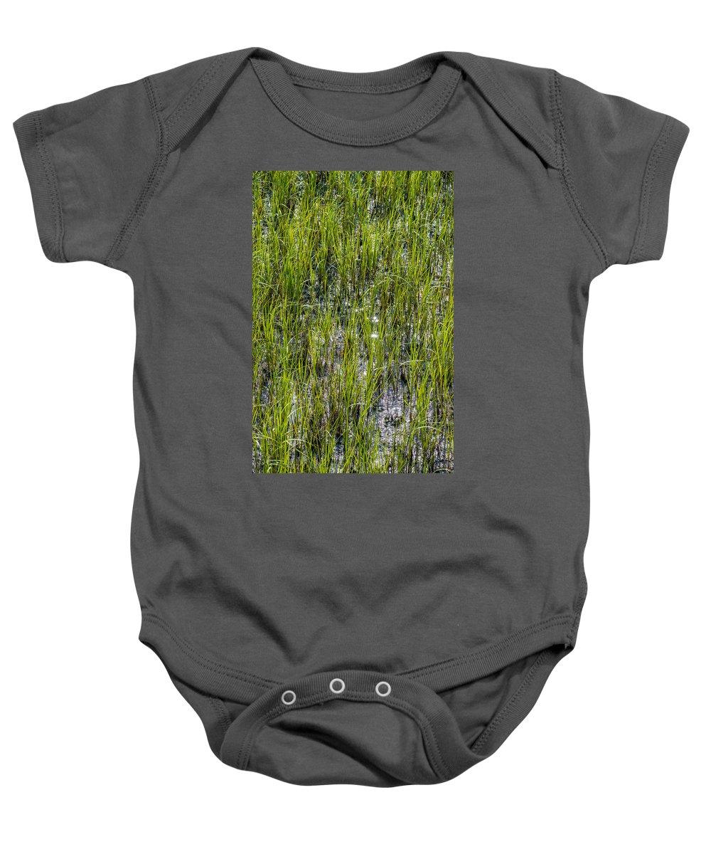 Beaufort Baby Onesie featuring the photograph Nature Scenes Around Hunting Island South Carolina by Alex Grichenko
