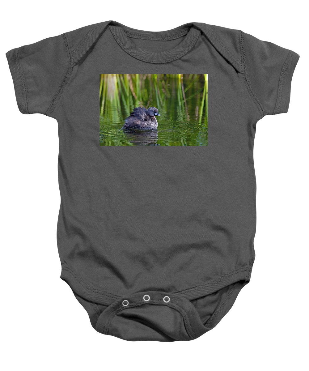 Pied-billed Grebe Baby Onesie featuring the photograph Pied-billed Grebe by Tam Ryan