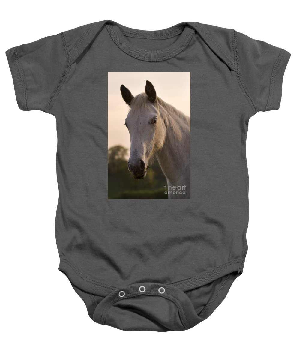 Horse Baby Onesie featuring the photograph The Horse Portrait by Angel Ciesniarska