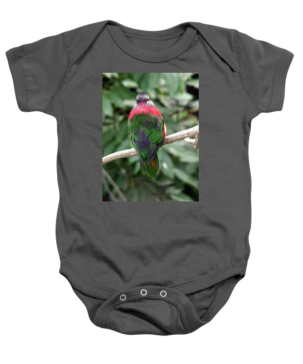 Bird Baby Onesie featuring the photograph A Bird's Perspective by Amy Fose