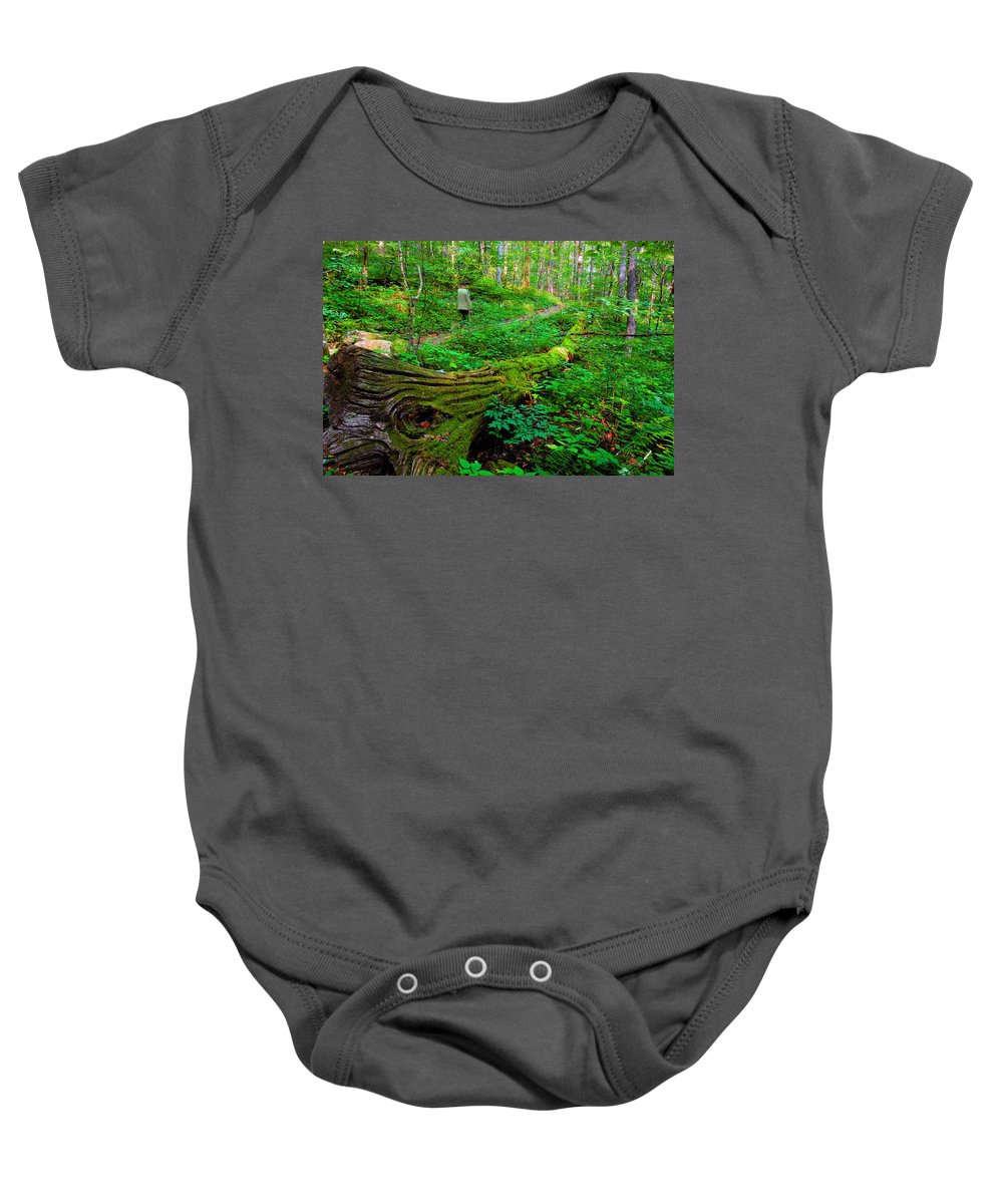 Hiking Baby Onesie featuring the painting A Forest Stroll by David Lee Thompson