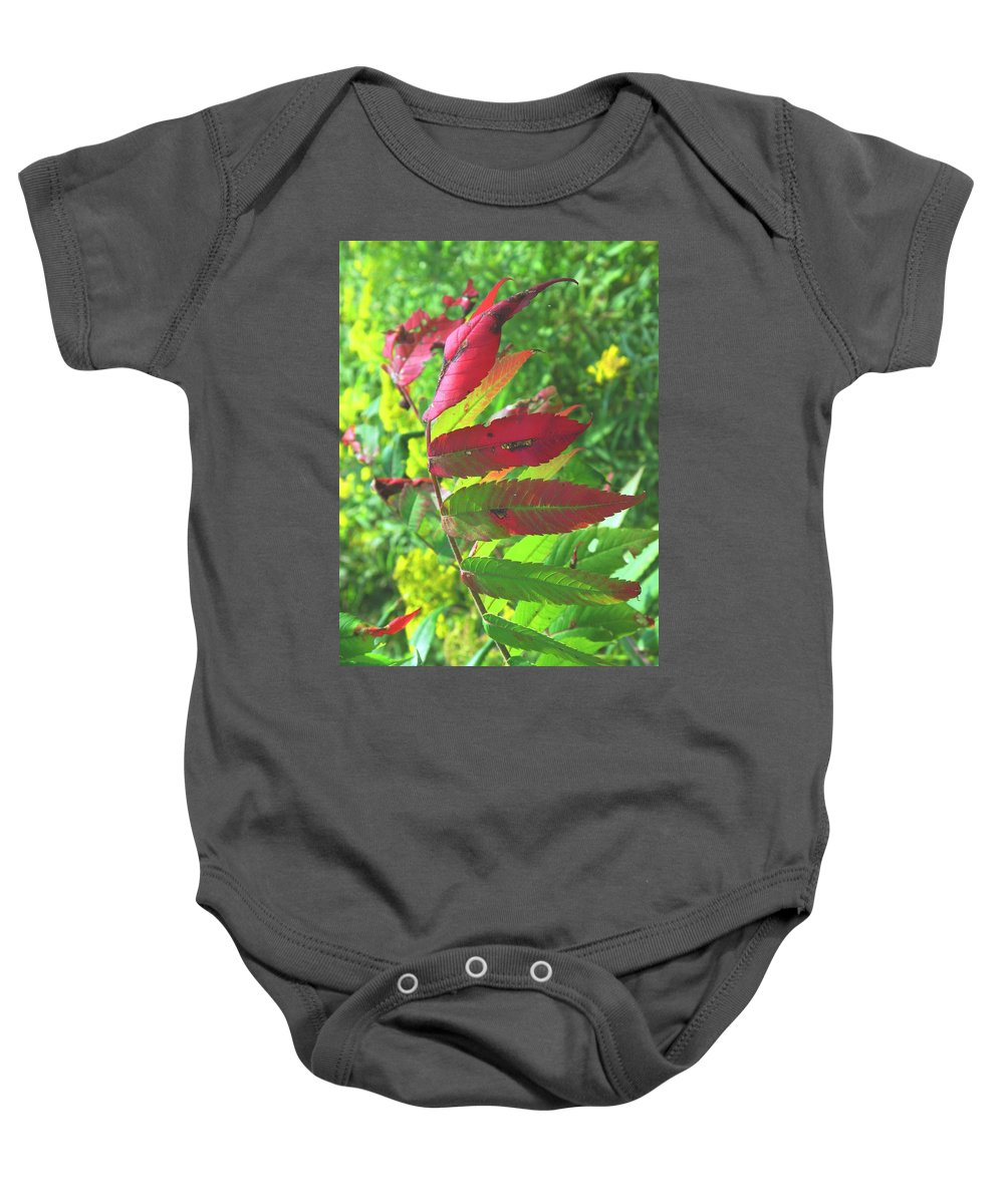 Leaves Baby Onesie featuring the photograph A Hard Tough Summer by Ian MacDonald