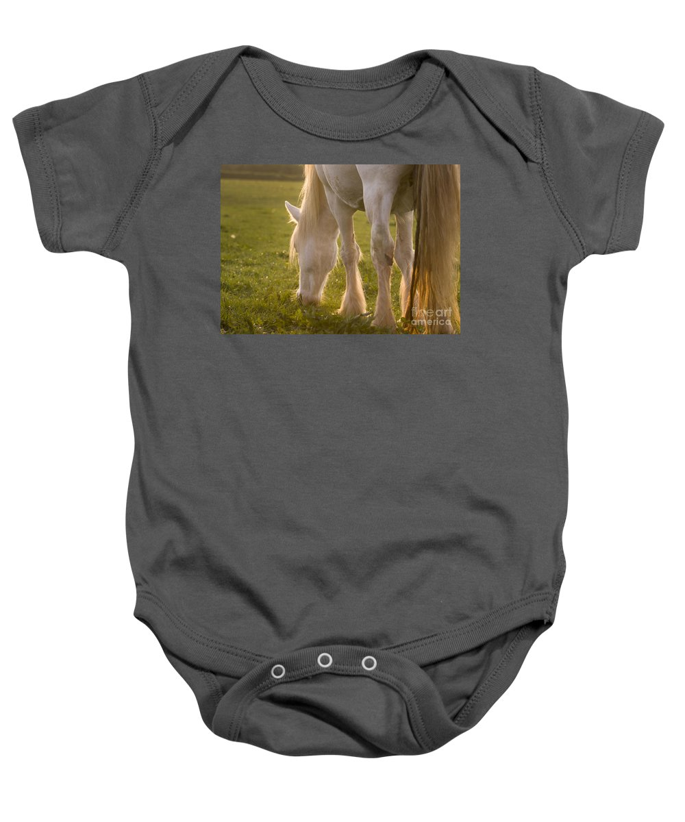 Horse Baby Onesie featuring the photograph A Lazy Supper by Angel Ciesniarska