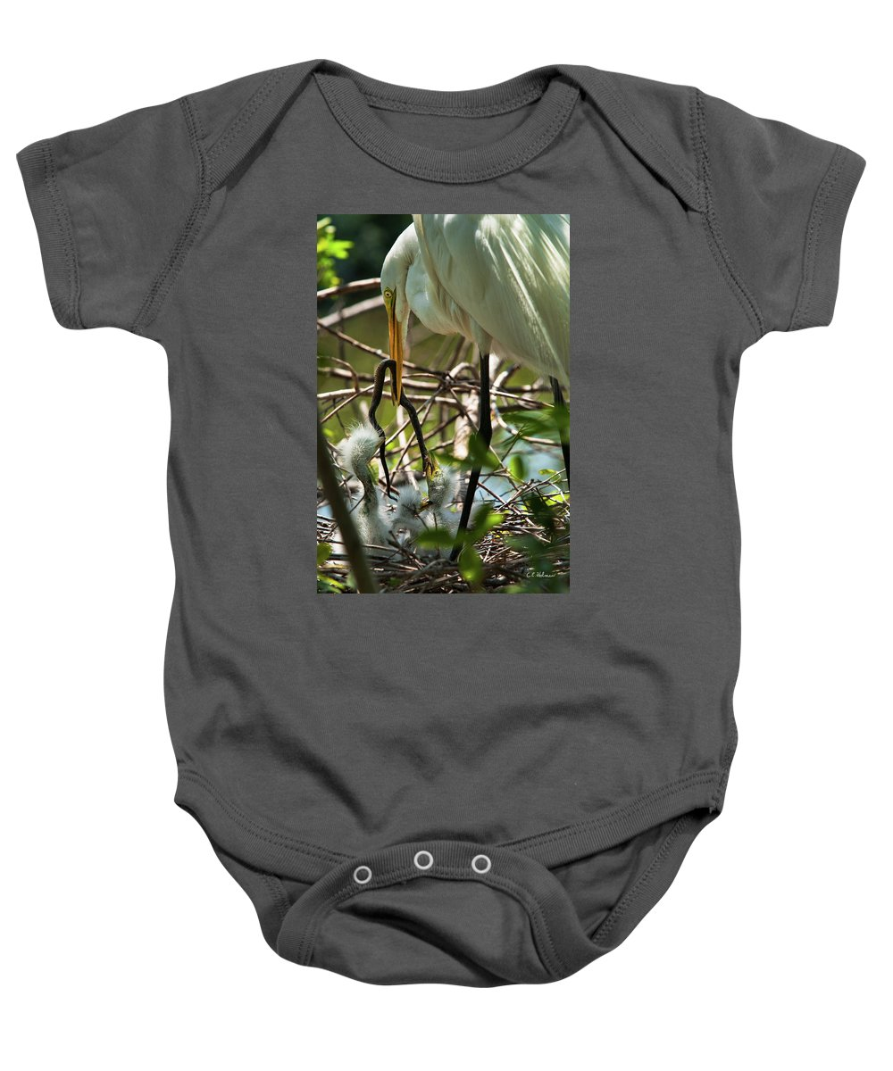 Birds Baby Onesie featuring the photograph A Lively Lunch by Christopher Holmes