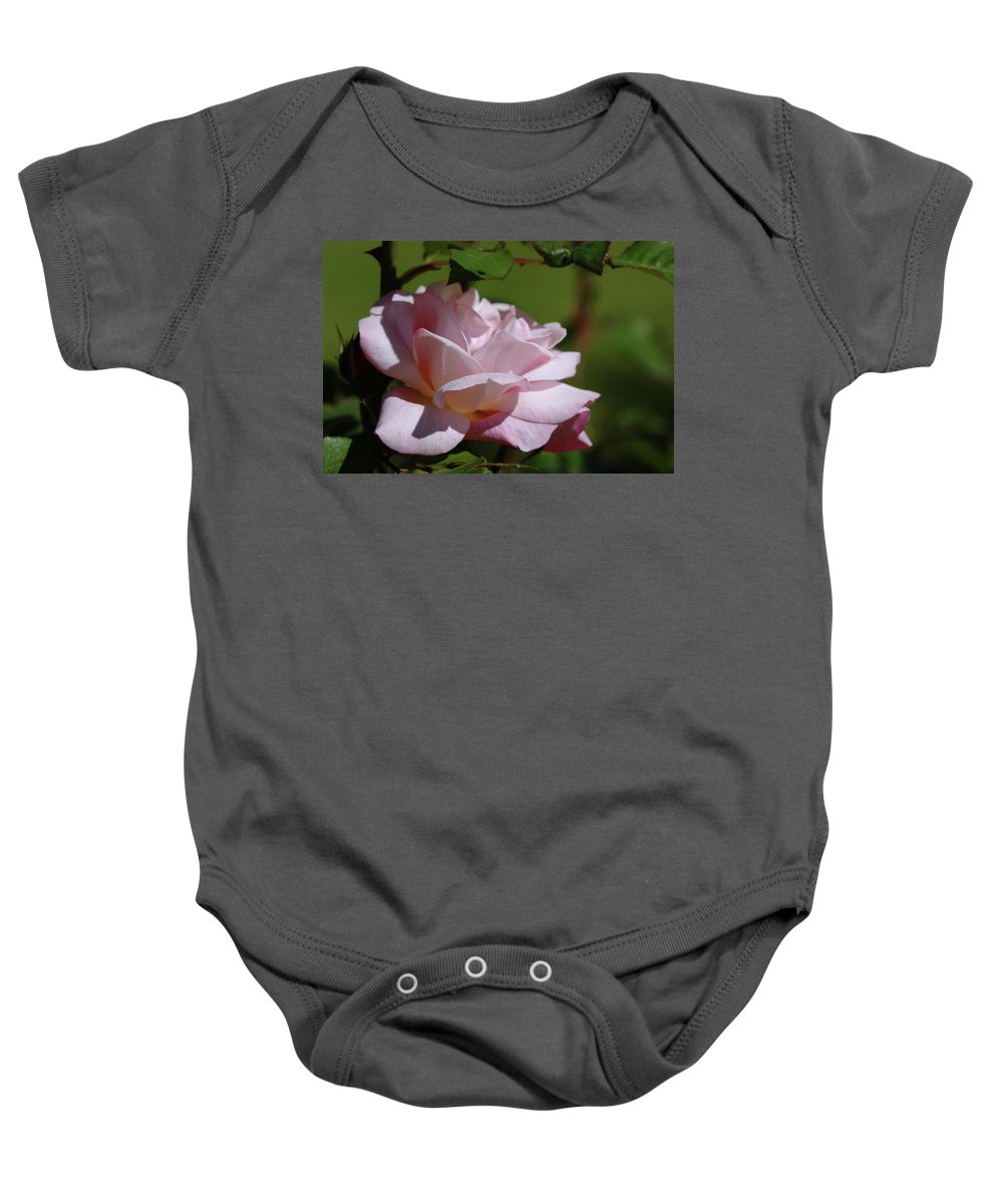 Roses Baby Onesie featuring the photograph A Pink Rose by Jeff Swan