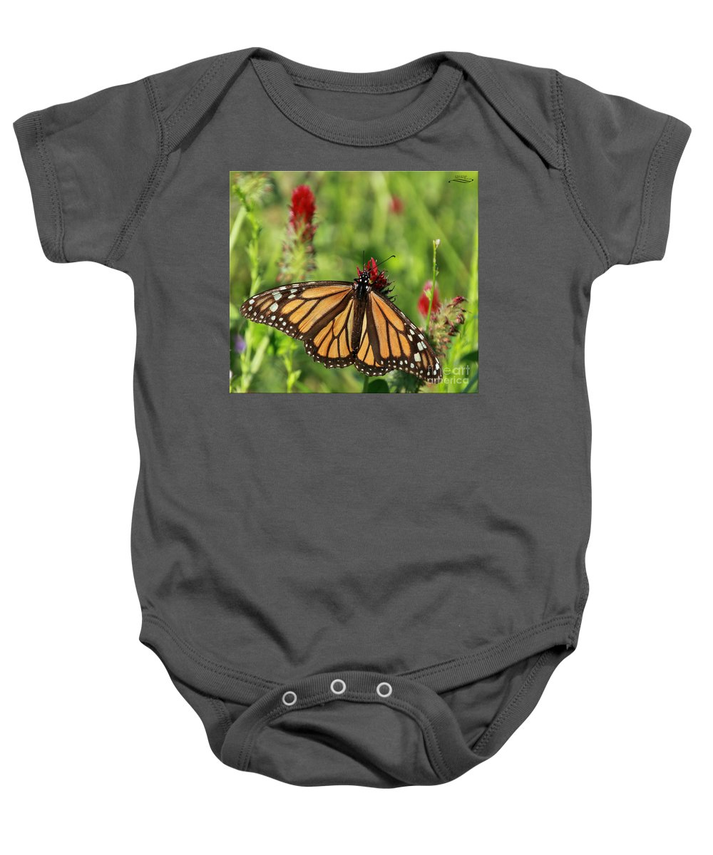 Monarch Baby Onesie featuring the photograph A Taste Of Clover by Rebecca Morgan