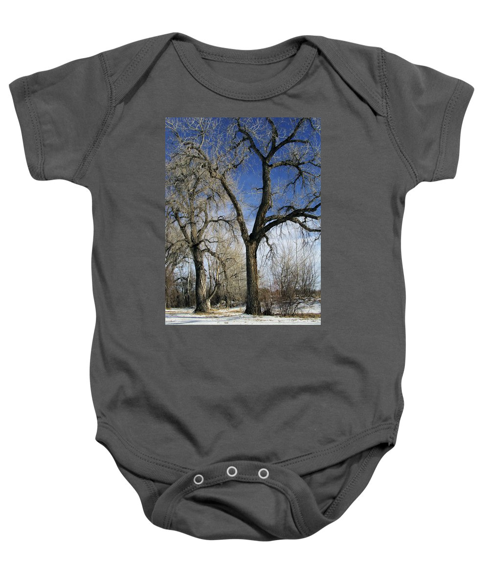 Tree Baby Onesie featuring the photograph A Winter Kiss by Angelina Vick