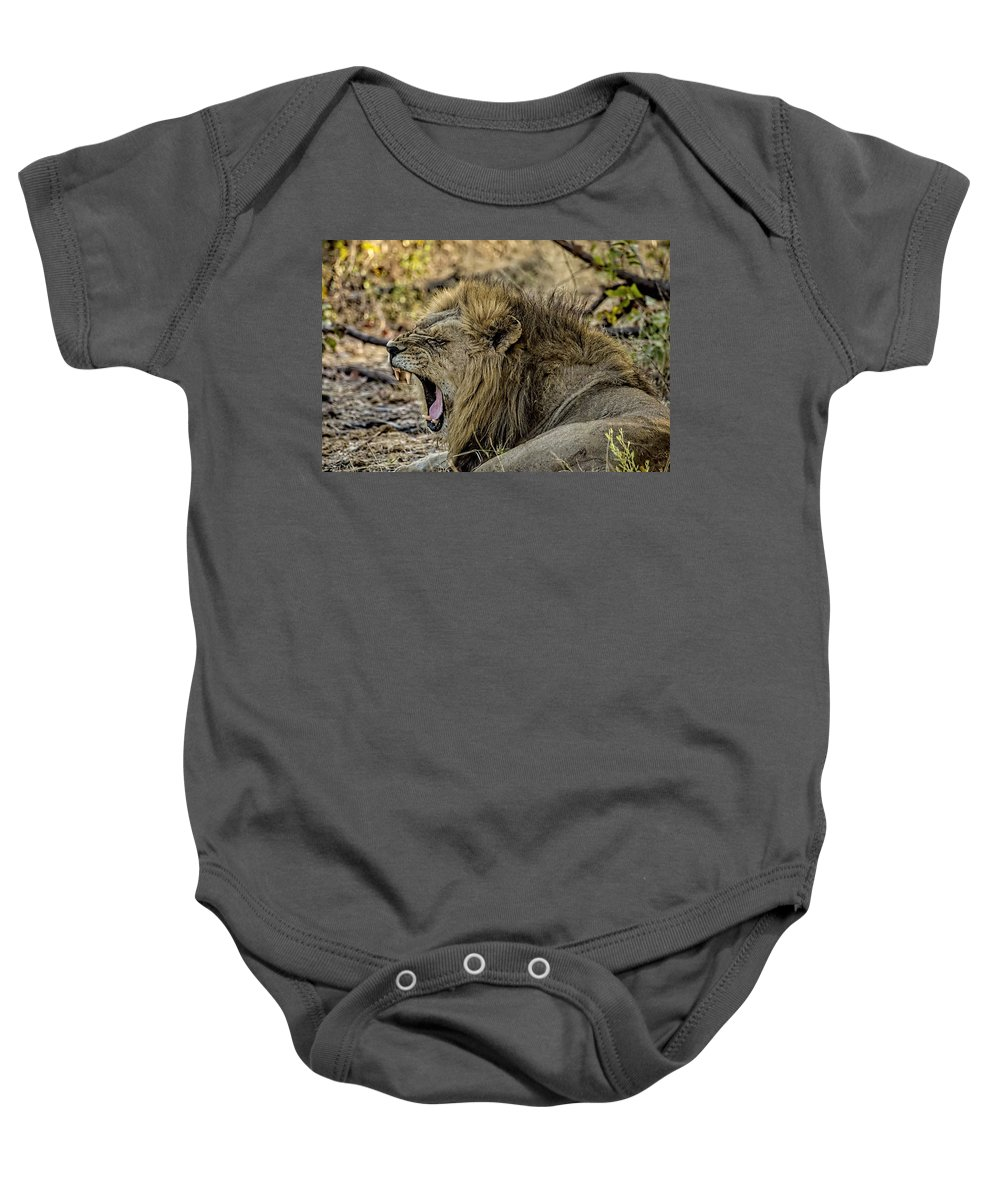 Lion Baby Onesie featuring the photograph A Yawning Lion by Kay Brewer