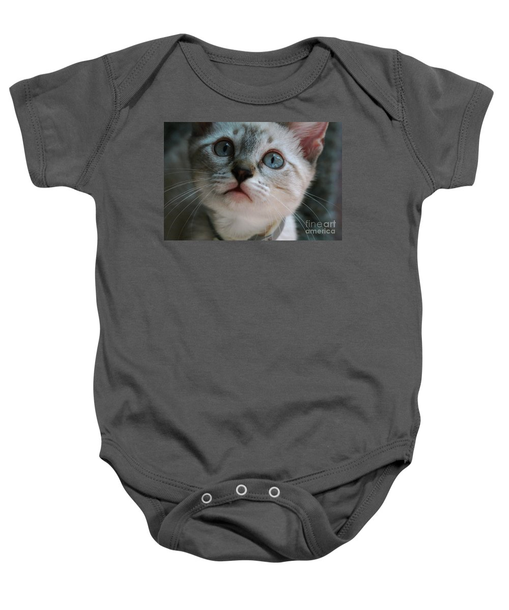 Cats Baby Onesie featuring the photograph Adorable Kitty by Kim Henderson