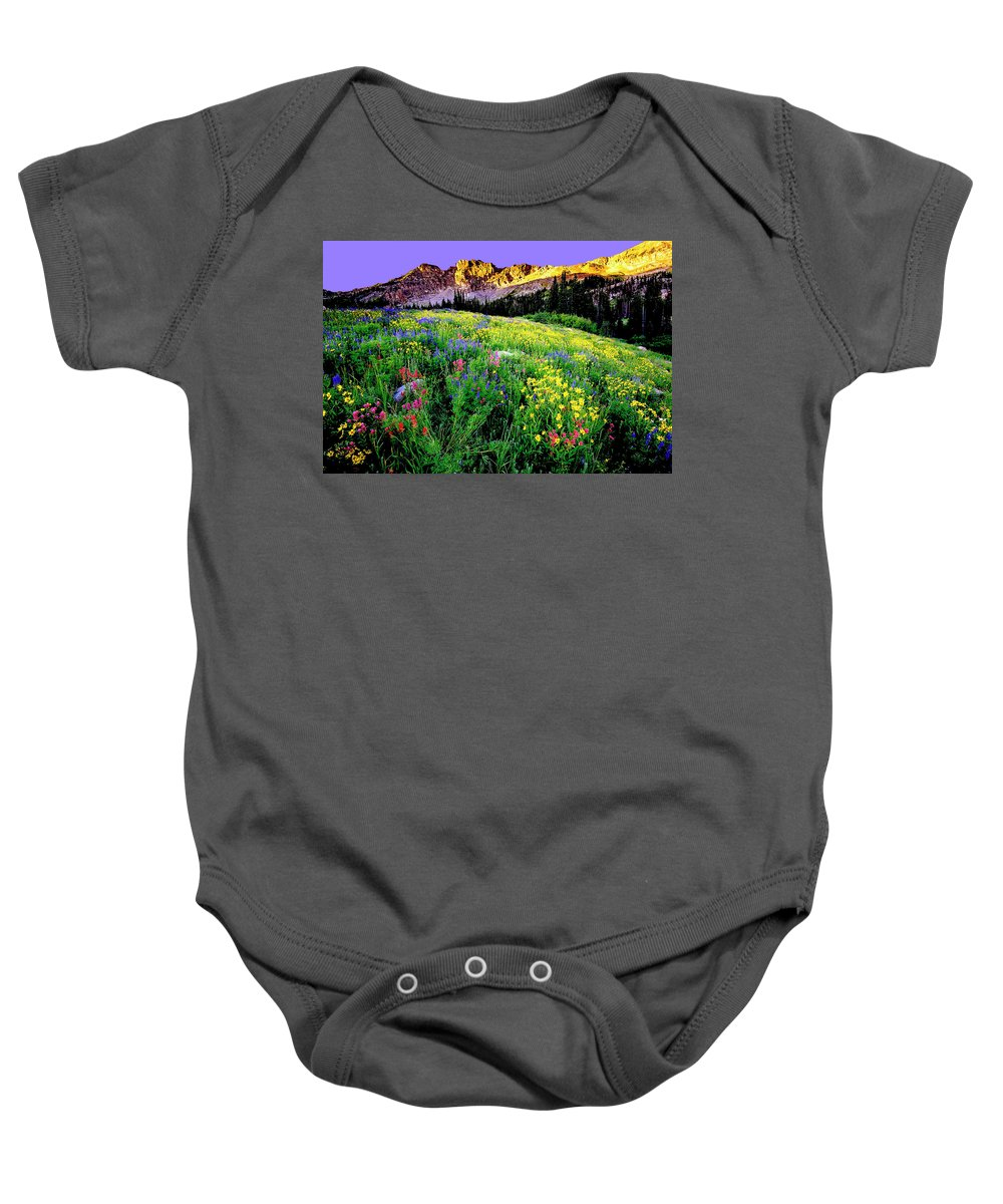 Landscape Baby Onesie featuring the photograph Albion Meadows by Norman Hall