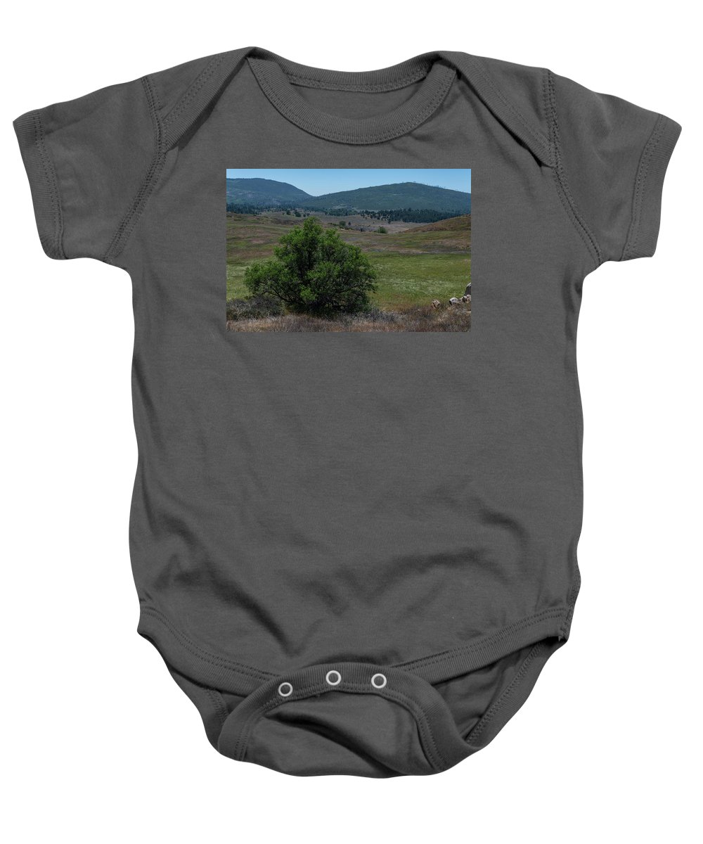 Cuyamaca Peak Baby Onesie featuring the photograph Alive And Dead by TM Schultze