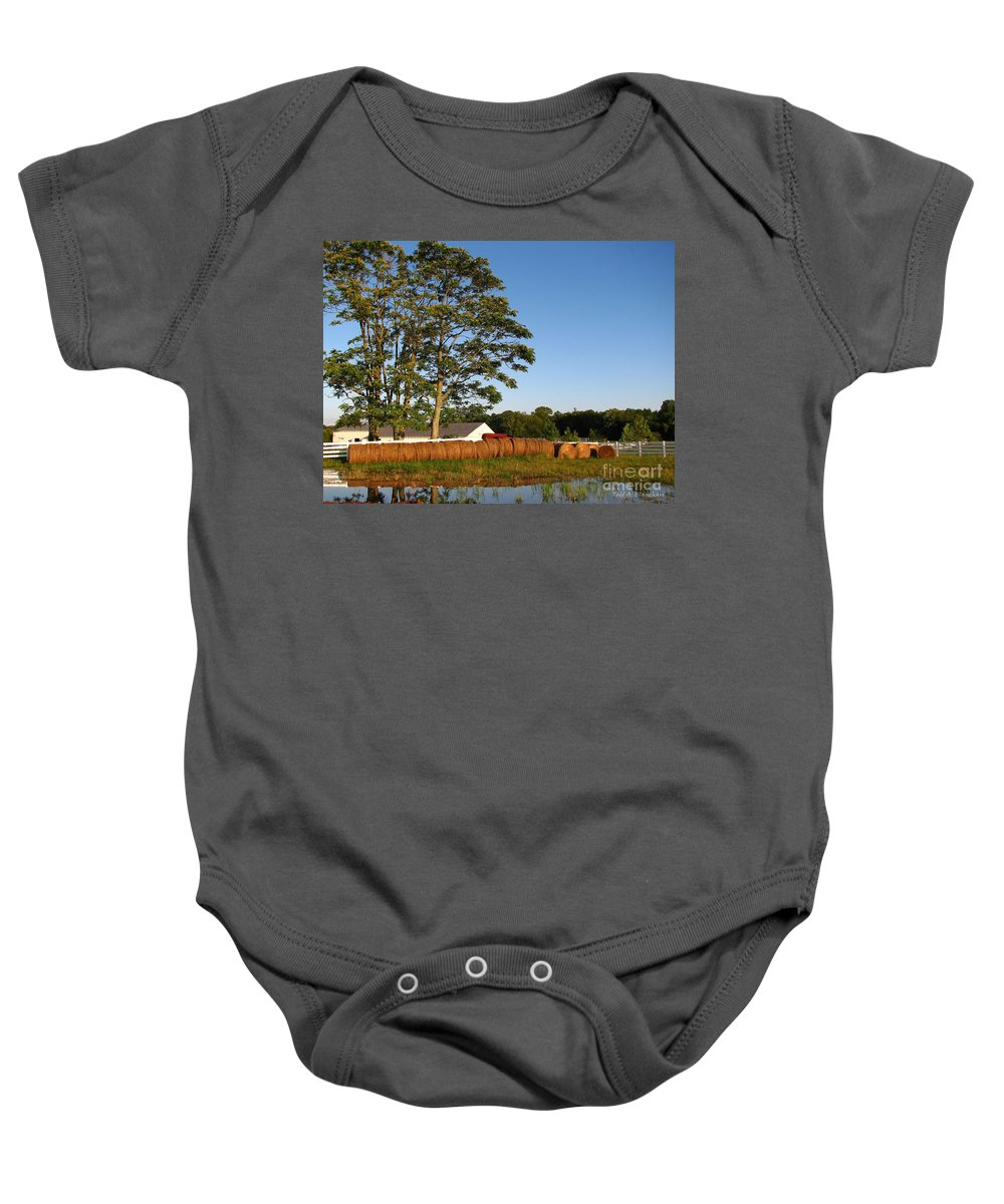Landscape Baby Onesie featuring the photograph All In A Row by Todd Blanchard