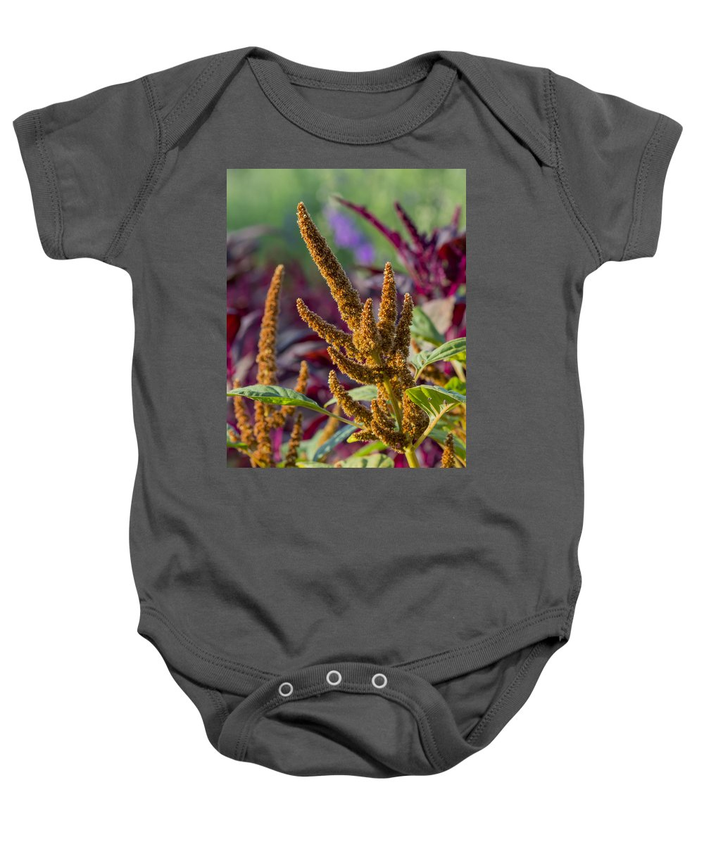 Flowers Baby Onesie featuring the photograph Amaranth- Two by Bruce Frye