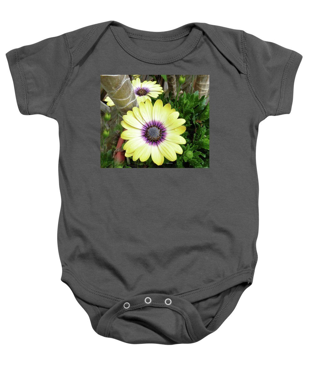 Flowers Baby Onesie featuring the photograph Amazing Daisy by Angelcia Wright