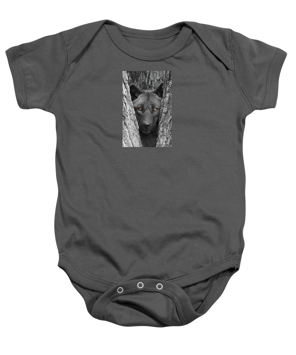 Wolf Baby Onesie featuring the photograph Amber by Shari Jardina