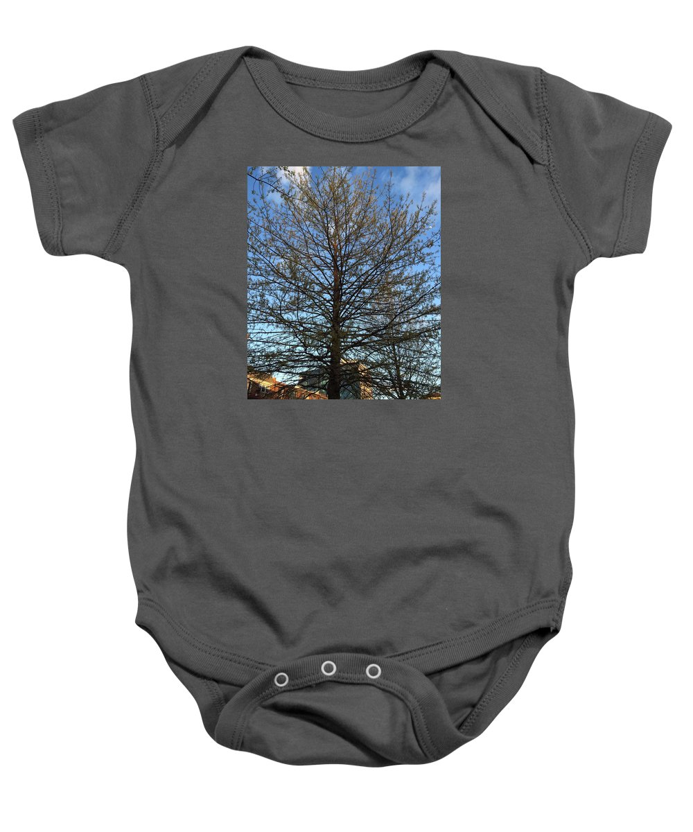 Tree Baby Onesie featuring the photograph A Late Spring by Ann Evangelista