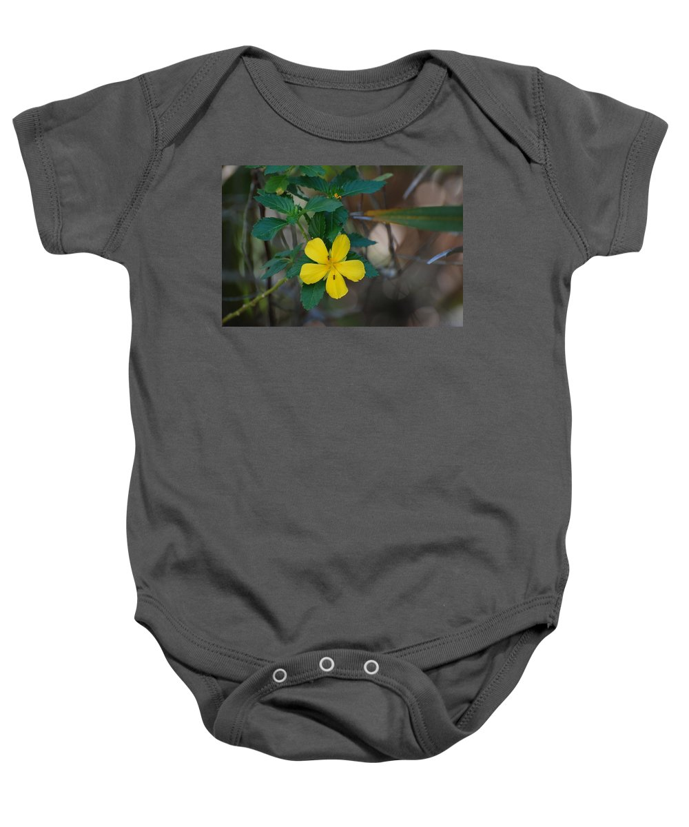 Macro Baby Onesie featuring the photograph Ant Flowers by Rob Hans