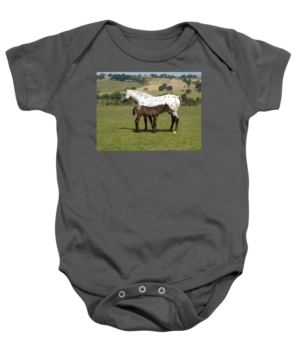 Horse Baby Onesie featuring the photograph Appaloosa Mare And Foal by Susan Baker