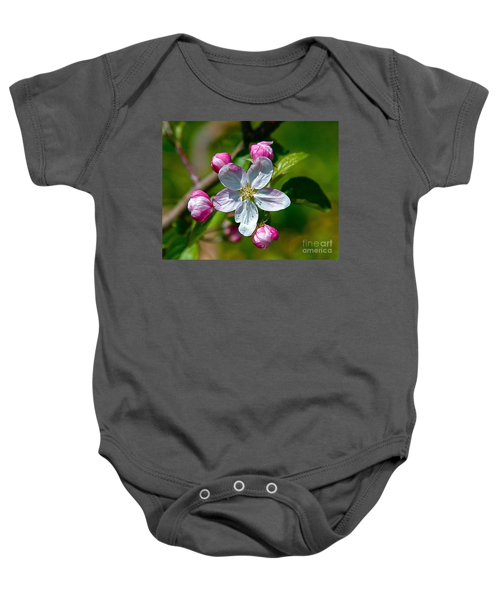 Flower Baby Onesie featuring the photograph Apple Blossom by Robert Pearson