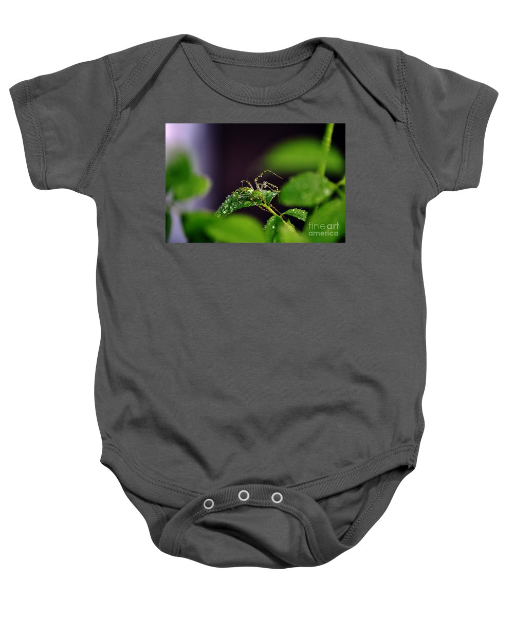 Clay Baby Onesie featuring the photograph Arachnishower by Clayton Bruster