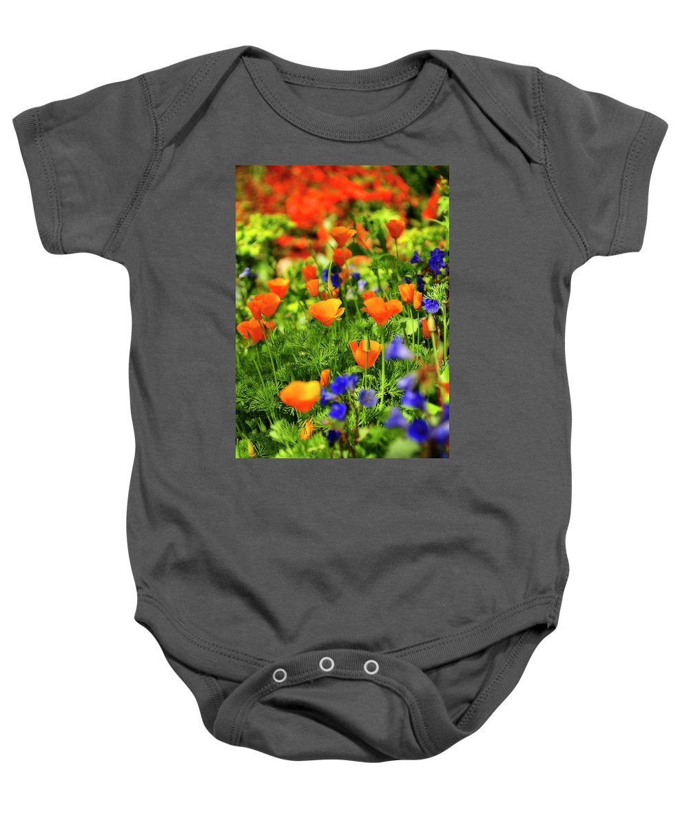 Arizona Baby Onesie featuring the photograph Arizona Wildflowers by Saija Lehtonen