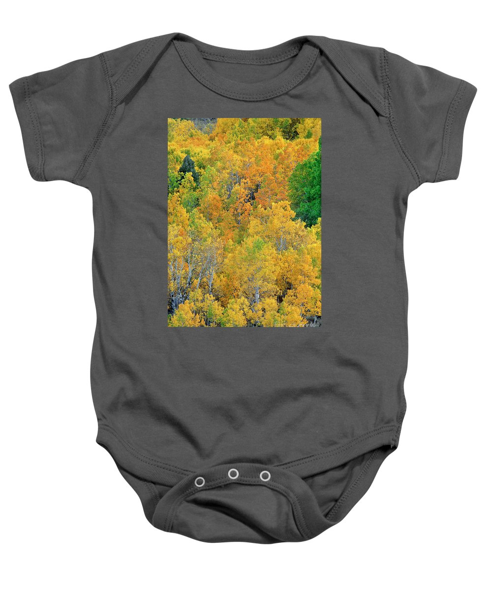 North America Baby Onesie featuring the photograph Aspens In Fall Eastern Sierras California by Dave Welling